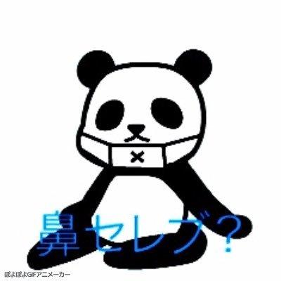 のすい~ | Social Profile