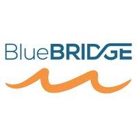 BlueBridgeVREs
