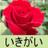 @yuwajiji