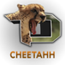 @TC_Cheetahh