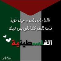 @shadiadarwish21
