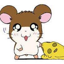 ᵗᵐᵞ°³²⁵@ぬっ(((ω))) Social Profile