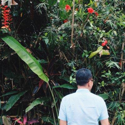 roy pardomuan | Social Profile