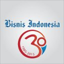 Bisnis Indo Group