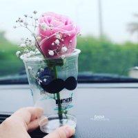 ISHQ | Social Profile