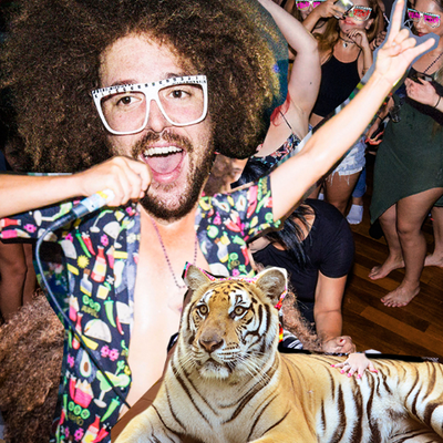 Redfoo | Social Profile