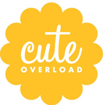 Cute Overload Social Profile