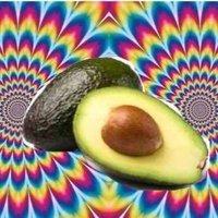avocadofact