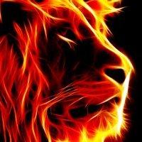 Kevin Panthera ♌   Social Profile