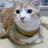 The profile image of marinet33