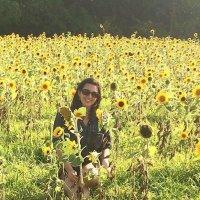 Jess Bender | Social Profile