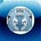 iModzone Social Profile