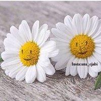 @eman_mohdali