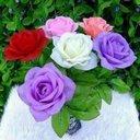 0128 294 0766 (@0128_294) Twitter