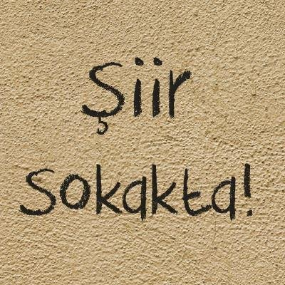 Siir Sokakta's Twitter Profile Picture