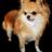 The profile image of harisu01