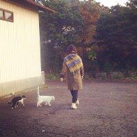 yo.motoo | Social Profile