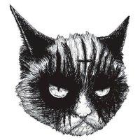 evilbmcats
