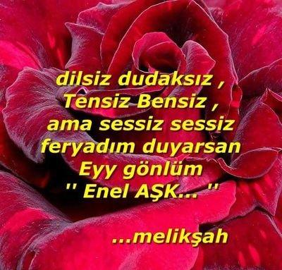 Melik Şah's Twitter Profile Picture