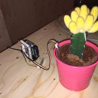 Bluemix_Plant