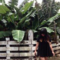 Sharon Lei Clemons | Social Profile