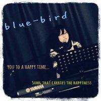 blue-bird | Social Profile