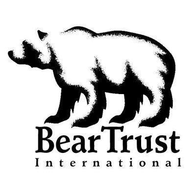 Bear Trust Intl | Social Profile