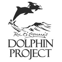 Dolphin_Project