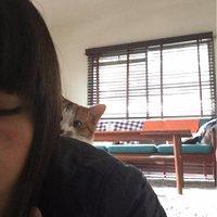山本祥子 | Social Profile