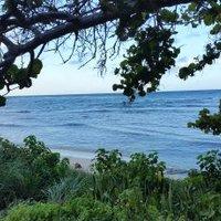 kimberly reese | Social Profile