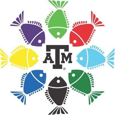 Fish Camp Social Profile