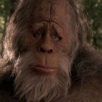 BIGFOOT | Social Profile