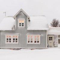 evlad-ı icelandic | Social Profile
