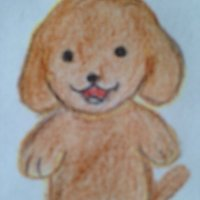 zatsuneko   Social Profile