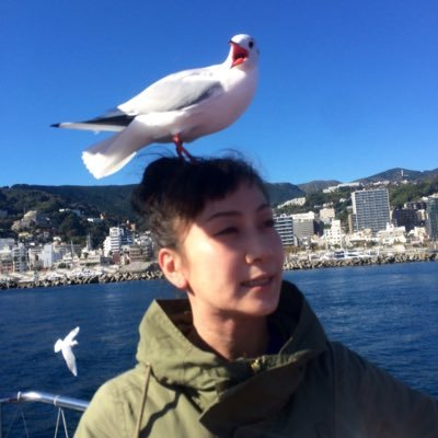 手代木花野 | Social Profile
