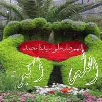 @al3em8