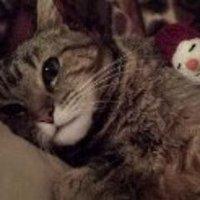 Gabby | Social Profile
