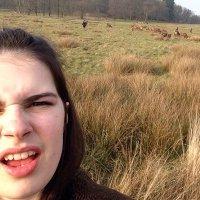 Emily Seidel | Social Profile