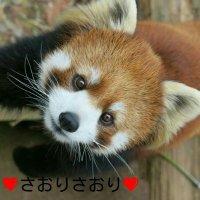 @love__mitarashi