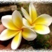 今日も元気に! | Social Profile