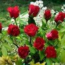 0093704423979  hasan (@0093704423979H) Twitter