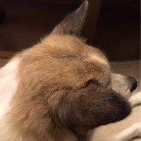 森田 友企子 | Social Profile