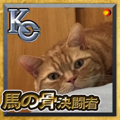 プレイヤ3 | Social Profile