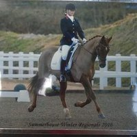 VickySempleDressage | Social Profile