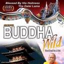 buddha wild movie (@buddhawild) Twitter