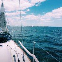 teresa mckay | Social Profile