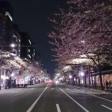 上田ちひろ | Social Profile