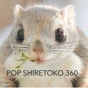 PopShiretoko360