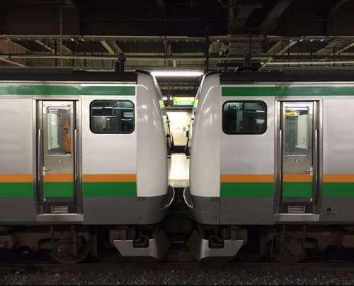 keisei(東大宮の人) Social Profile