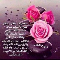 @AliAm719575